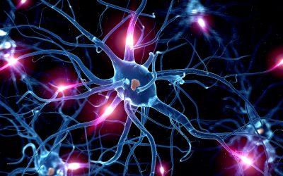 Últimas patentes – Control de glucosa mediante neuroestimulación por Verily Life Sciences